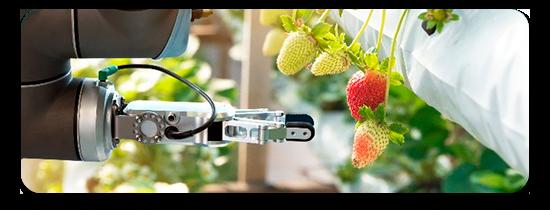 Agroindustria con robots